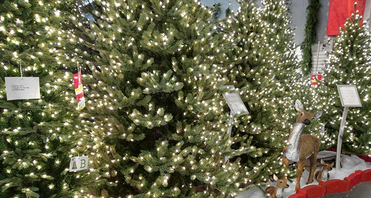 See with your own eyes what makes a Neuman Tree better than any other artificial Christmas tree in the country at Aldik Homes Tree Lot