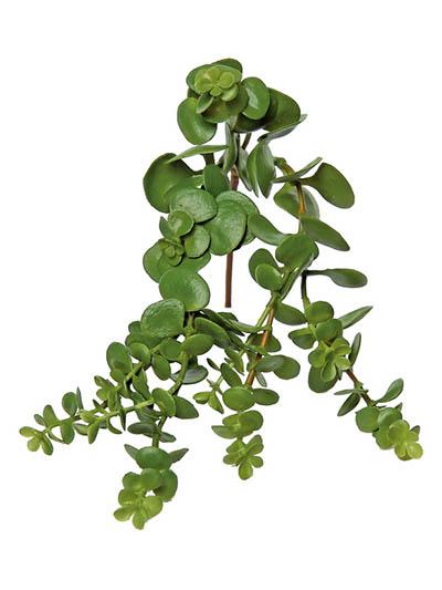 Aldik Home S Quality Artificial Succulents Hanging Succulent Vine