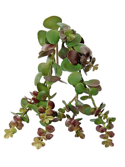 Aldik Home's Quality Artificial Succulents - Hanging Succulent Vine