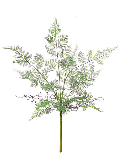 Aldik Home's Incredibly Realistic Silk Plants - Lace Fern