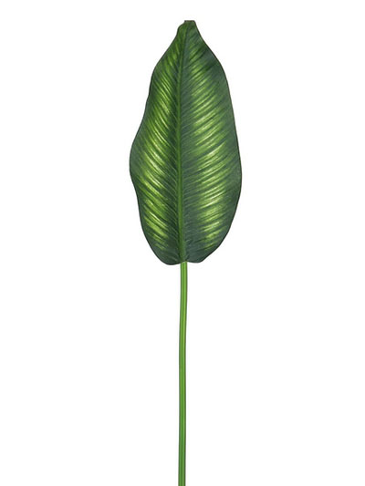 Aldik Home's Incredibly Realistic Silk Plants - Bird of Paradise Leaf