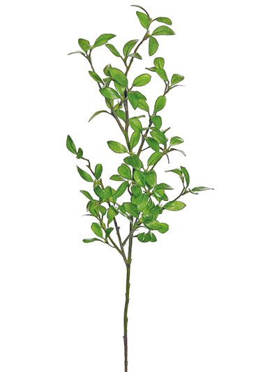 Aldik Home's Incredibly Realistic Silk Plants - Privet Leaf Branch