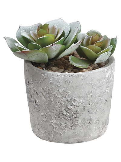 Aldik Home's Quality Artificial Succulents - Echeveria in Pot