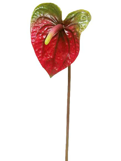 Aldik Home's Stunning Silk Plants - Anthurium