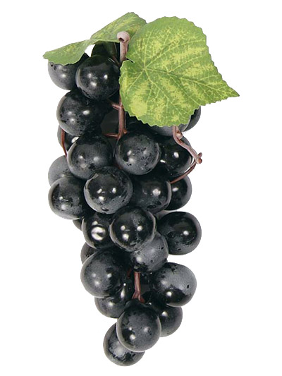 Aldik Home's Deliciously Realistic Fruits & Vegetables - Grape Cluster