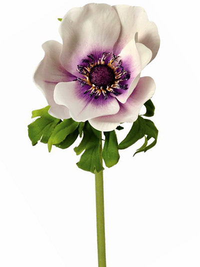 Aldik Home's Realistic Silk Flowers - Soft Touch Anemone
