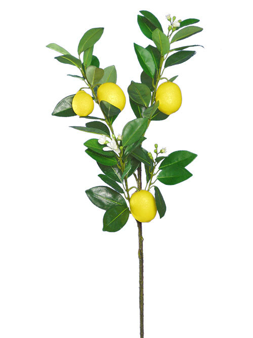 Aldik Home's Deliciously Realistic Fruits & Vegetables - Lemon Branch