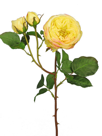 Aldik Home's Realistic Silk Flowers - English Rose