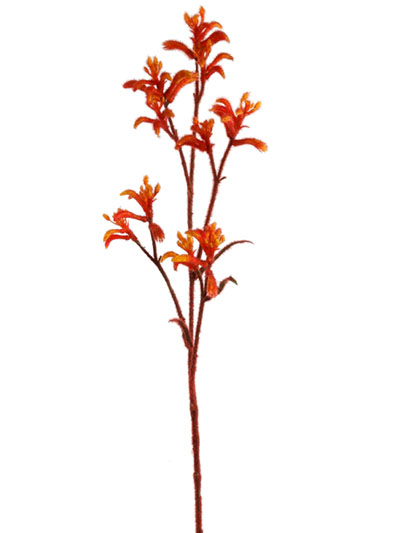 Aldik Home's Quality Artificial Succulents - Kangaroo Paw