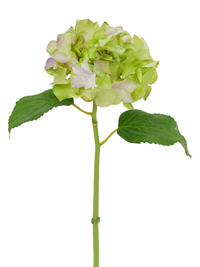 Aldik Home's Realistic Silk Flowers - Hydrangea Natural Touch