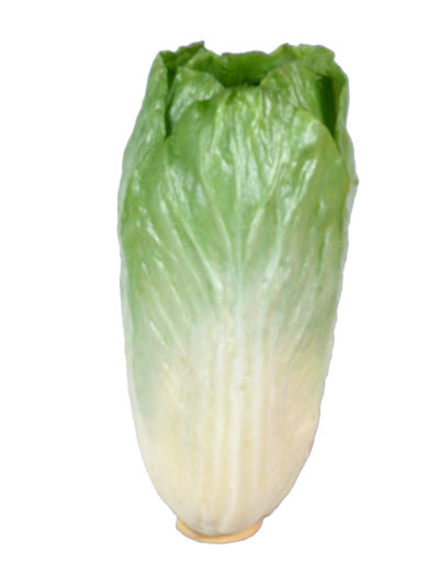 Aldik Home's Deliciously Realistic Fruits & Vegetables - Napa Cabbage