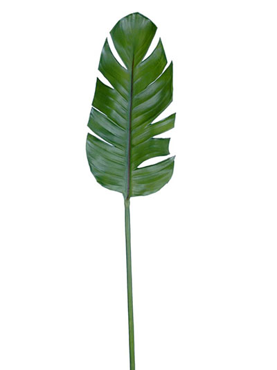Aldik Home's Incredibly Realistic Silk Plants - Banana Leaf
