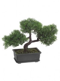Aldik Home's Stunning Silk Plants - Cedar Bonsai
