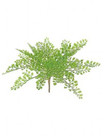 Aldik Home's Incredibly Realistic Silk Plants - Maidenhair Fern