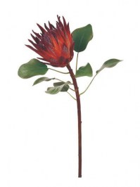 Aldik Home's Realistic Silk Flowers - King Protea