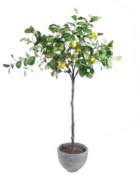 Aldik Home's Realistic Silk Foliage - Lemon Tree