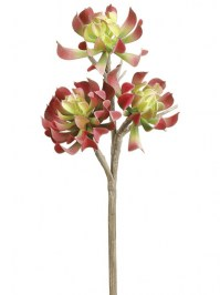 Aldik Home's Quality Artificial Succulents  - Aeonium