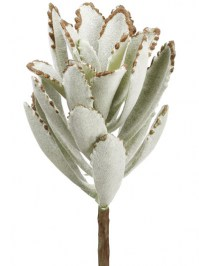 Aldik Home's Quality Artificial Succulents - Kalanchoe