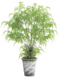 Aldik Home's Incredibly Realistic Silk Plants - Potted Fern
