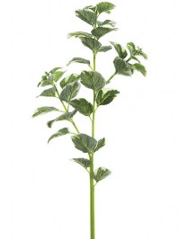 Aldik Home's Incredibly Realistic Silk Plants - Oregano Stem