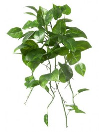 Aldik Home's Incredibly Realistic Silk Plants - Pothos Bush