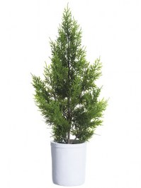 Aldik Home's Festive Christmas Decor - Cedar Tree Potted
