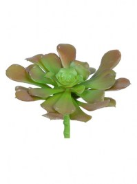 Aldik Home's Quality Artificial Succulents - Black Mage Succulent