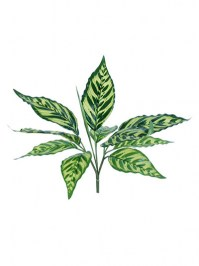 Aldik Home's Realistic Silk Plants - Arrowroot Leaves