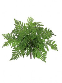 Aldik Home's Realistic Silk Plants - Leather Fern Bush