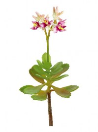Aldik Home's Quality Artificial Succulents - Blooming Succulent