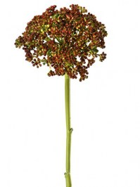 Aldik Home's Incredibly Realistic Silk Plants - Sedum