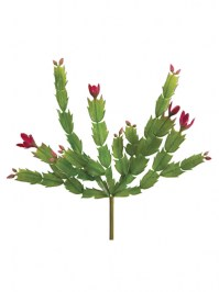 Aldik Home's Quality Artificial Succulents - Christmas Cactus