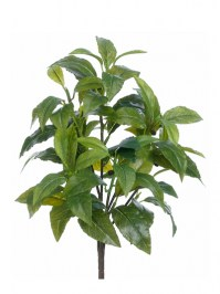 Aldik Home's Stunning Silk Plants - Coffee Leaf Bush
