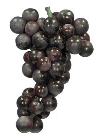 Aldik Home's Deliciously Realistic Fruits & Vegetables - Concord Grapes