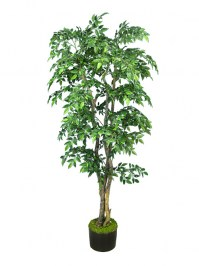 Aldik Home's Hand-Crafted Custom Silk Trees – Slim Mini Ficus