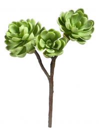 Aldik Home's Quality Artificial Succulents – Hen and Chicks