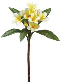 Aldik Home's Incredibly Realistic Silk Flowers - Plumeria Spray