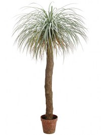 Aldik Home's Quality Artificial Succulents - Potted Desert Palm