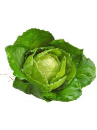 Aldik Home's Deliciously Realistic Fruits & Vegetables - Cabbage
