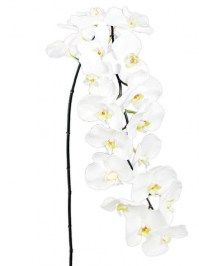 Aldik Home's Realistic Silk Flowers - Phalaenopsis Spray