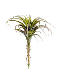 Aldik Home's Quality Artificial Succulents – Tillandsia