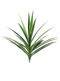 Aldik Home's Quality Artificial Succulents – Yucca