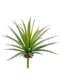 Aldik Home's Quality Artificial Succulents – Yucca Pick