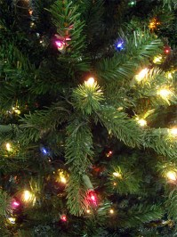 Aldik Home's Premium Artificial Christmas Trees - Colorado Fir