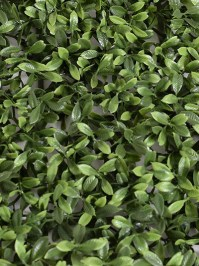 Aldik Home's Stunning Silk Plants - Tea Leaf Mat