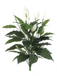 Aldik Home's Incredibly Realistic Silk Plants - Spathiphyllum