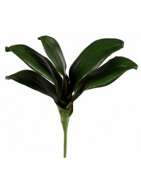 Aldik Home's Incredibly Realistic Silk Plants - Phalaenopsis Foliage