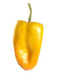 Aldik Home's Deliciously Realistic Fruits & Vegetables - Bell Pepper