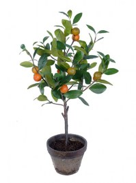 Aldik Home's Deliciously Realistic Fruits & Vegetables - Tangerine Tree