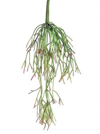 Aldik Home's Quality Artificial Succulents - Hanging Rhipsalis